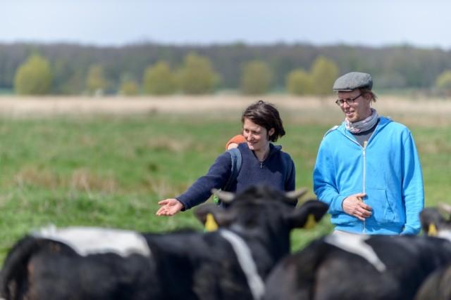 Betriebsleiter Benjamin Todtmann, Miriam Wegerer und Rinder auf Stramien-Weide, Hof Klostersee, Cismar, Schleswig-Holstein, Deutschland